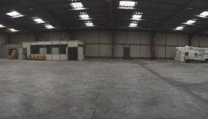 Vente local d'activité - entrepôt à Caudry - Ref.59.9781