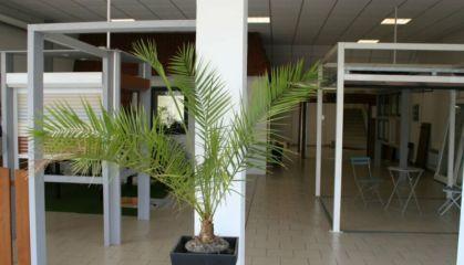 Location local commercial à Petite-Forêt - Ref.59.9873 - Image 3